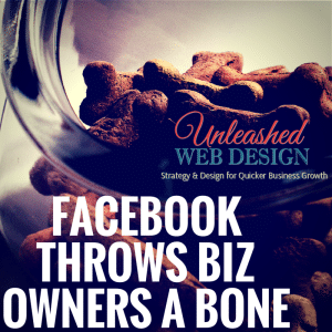 FB-Throws-a-Bone-to-Biz-Owners